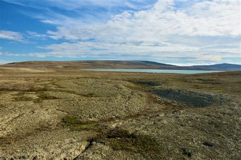 Researchers dig into Canadian North to understand carbon