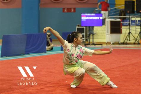 Noteworthy Xuan Sports Athletes in the National Wushu