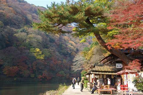 How to choose discount railway ticket and pass in Kansai