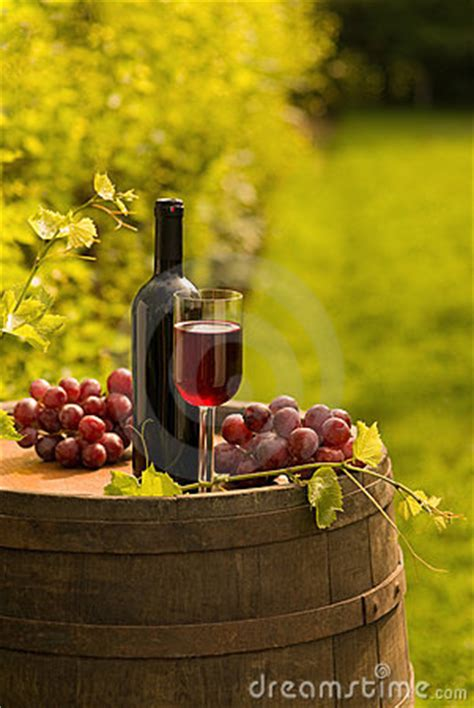 Red Wine Bottle, Wineglass And Grapes In Vineyard Stock