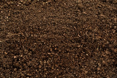 Soil structure | Space for life