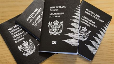 Immigration NZ staff investigated for issuing visas to