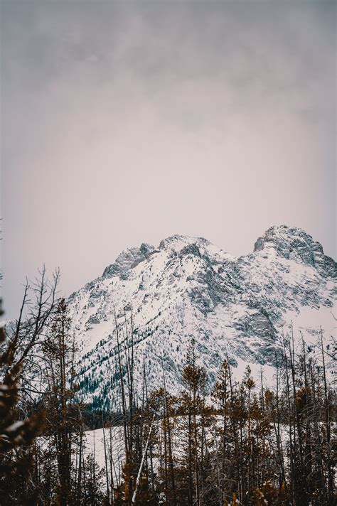 Snow Covered Mountain · Free Stock Photo