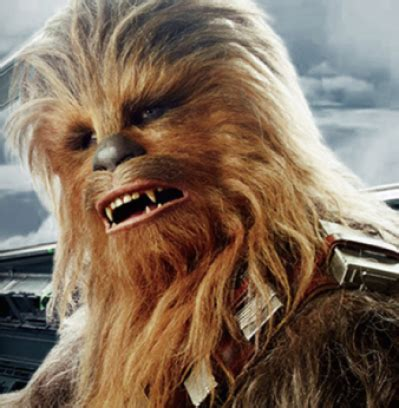 Spend the weekend with a wookiee! 'Chewbacca' actor Joonas
