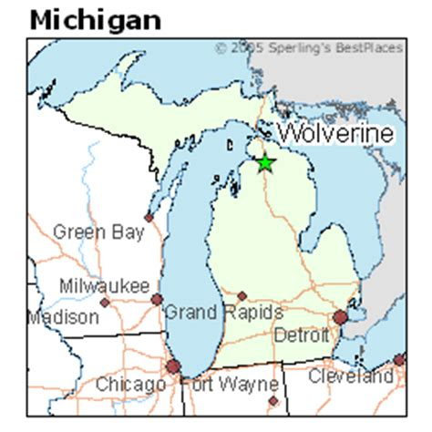 Best Places to Live in Wolverine, Michigan