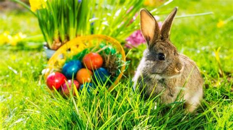Happy Easter | Windows Themes